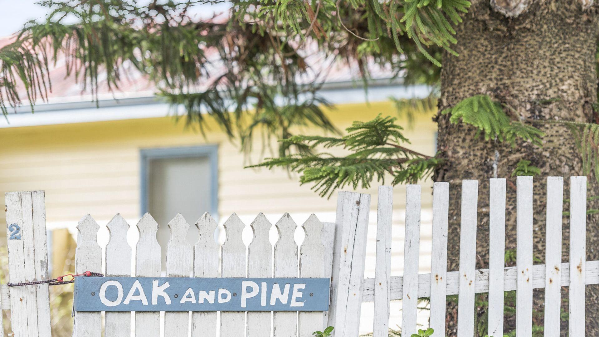 Oak And Pine