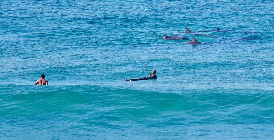 Nautilus 6 Beach Front Bliss