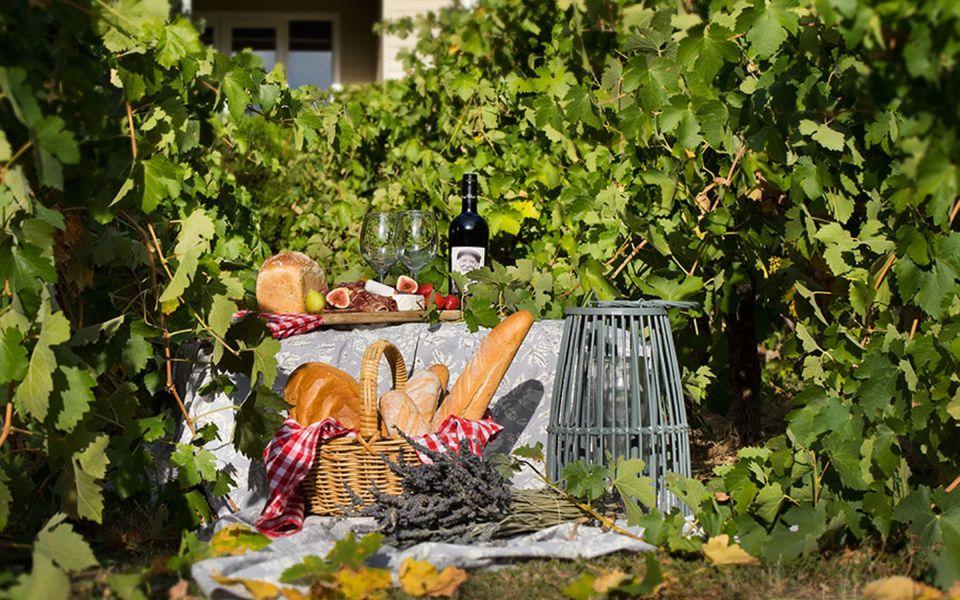 Provence Spa Villa 1